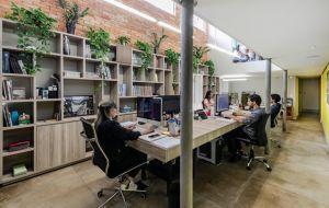 Pé-direito alto, iluminação natural, revestimentos com inspiração em técnicas construtivas brasileiras e mobiliário assinado: conheça o escritório do
