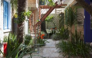 Jardim em casa: Paisagistas Catê Poli e João Jadão dão dicas essenciais para quem deseja ter seu próprio cantinho verde