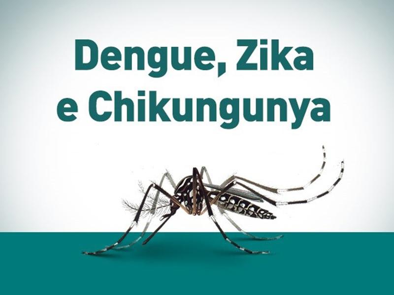 Arquitetos contra o Aedes Aegypti