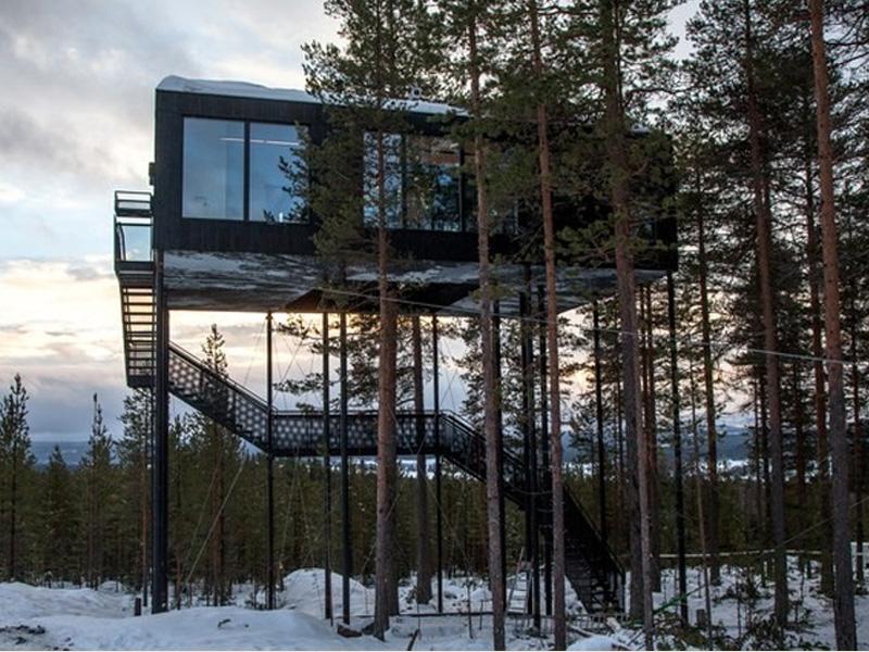 Hotel na árvore oferece conforto e vista privilegiada para aurora boreal